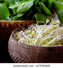 Homemade bean sprouts for food safety, germinate of green beans make nutrition vegetable cuisine, close up of sprout with basket on wooden background