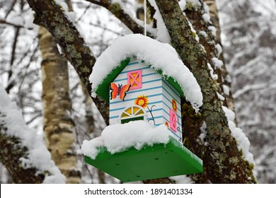 Homemade bird feeder covered with snow for feeding birds in the winter cold. Russia