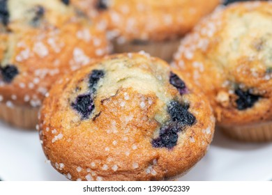 Homemade  Blueberry Muffins with sugar topping. Put on white plate.