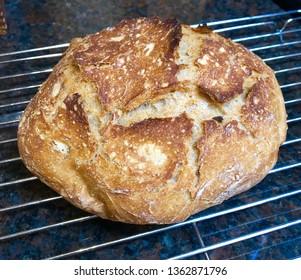 Homemade Bread Oven