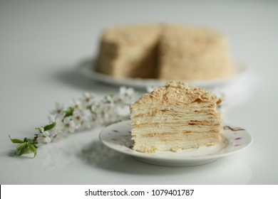 Homemade cake Napoleon on the background colors