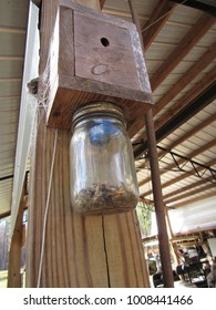 Homemade carpenter bee trap