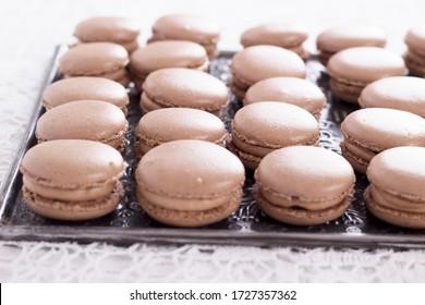 Macarons au chocolat maison et crème au chocolat sur fond blanc
