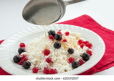 Homemade cottage cheese with red and black currant honey