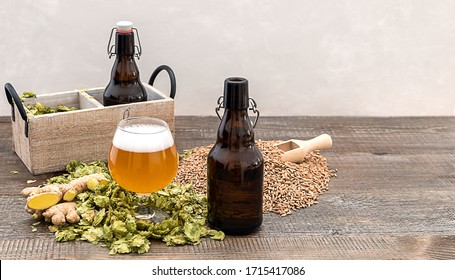 Homemade craft ginger beer in a glass with dry hops and growlers on the wooden table. Copy space