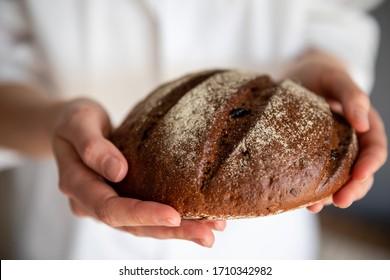 Homemade crusty loave of bread. Baker holding fresh bread in the hands. Still life dark mood concept.