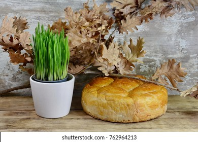 Homemade decorated Serbian slava bread and young wheat  in pots on the rustic wooden board.