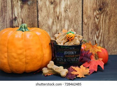 Homemade dog biscuits in a fall setting with pumpkins and leaves.