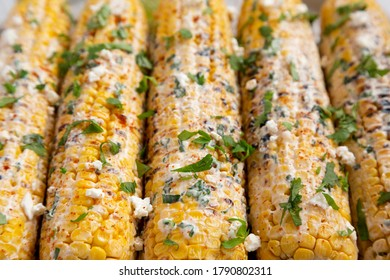 Homemade Elote Mexican Street Corn on a plate, side view. Close-up.