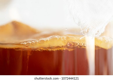 """homemade fermented drink Kombucha SCOBY """"symbiotic culture of bacteria and yeast"""" in a glass bottle jar, close up."""