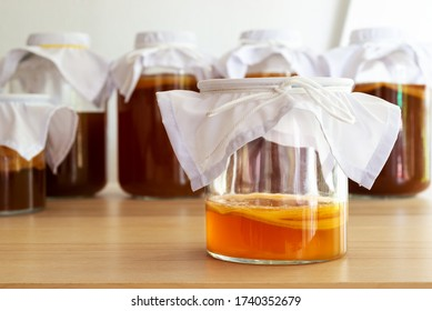 """homemade fermented drink Kombucha SCOBY """"symbiotic culture of bacteria and yeast"""" in a glass bottle jar."""