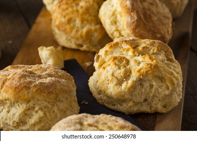 Homemade Flakey Buttermilk Biscuits Ready to Eat