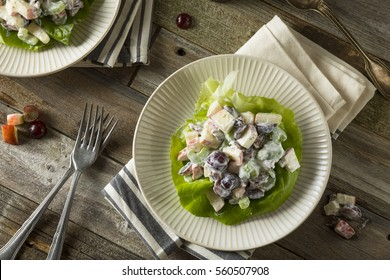 Homemade Fresh Waldorf Salad with Apples Grapes and Dressing