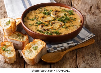 Homemade Hungarian delicious thick mushroom soup with fresh dill in a bowl and toast close-up on the table. horizontal