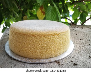Homemade Japanese cotton cheesecake or souffle cheesecake with powdered sugar icing on green natural background