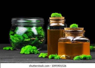 Homemade pine cough syrup for dry irritating throat coughs. Made from green young pine buds and honey.Alternative medicine concept on black wooden table (selective focus).