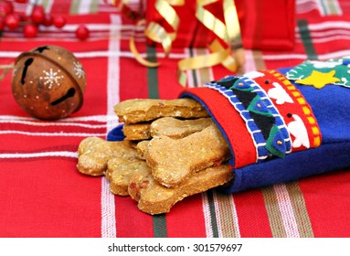 Homemade pumpkin, bacon dog biscuits in a handmade Christmas stocking.  Christmas present for the dog.