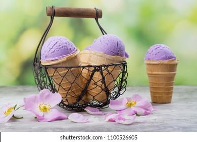 Homemade purple ube ice cream scoops in waffle cones on outdoor green background. Beniimo Ice Cream. Copy space