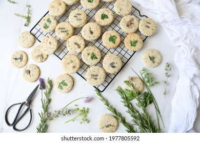 Homemade Rosemary-Parmesan savory shortbread garnished with garden fresh herbs: thyme, oregano, parsley chives and sage against white background, copy space, top view.