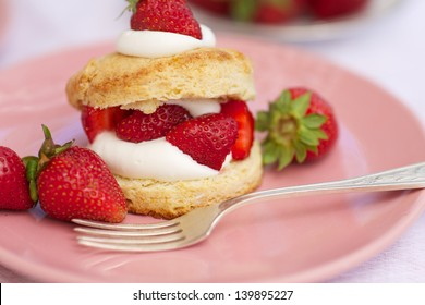 Homemade strawberry shortcake with whipped cream, selective focus