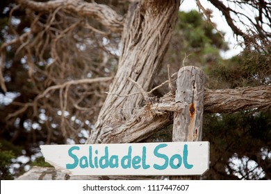 Homemade sunrise sign written in spanish made of wood on a background of branches