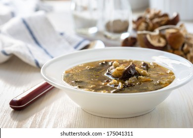Homemade vegetarian mushroom soup with barley and vegetables in white plate