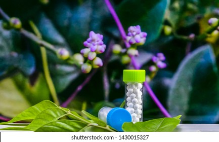 Homeopathic Concept - Bottles of Homeopathic sugarball pills on green leaves with blurred wild purple flower background