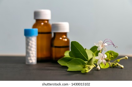 Homeopathic medicine concept – Healing herbs, globule pills and liquid homeopathic substance background with leaves and flower
