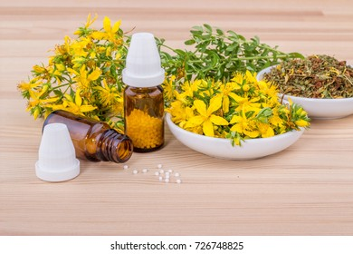 homeopathic medicine with dried and blooming St. John's wort on a wooden ground