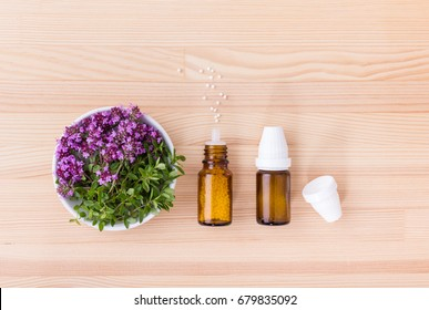 Homeopathic remedy with flowering wild thyme / Homeopathic medicines / wild thyme