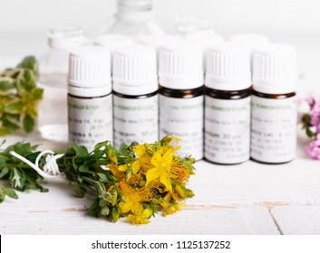 Homeopathy. A homeopathy concept with homeopathic medicine. Dried healing herbs and bottles of homeopathic globules.