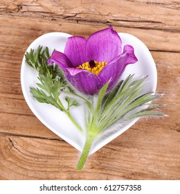 Homeopathy and cooking with pulsatilla