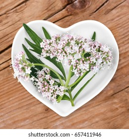 Homeopathy and cooking with valerian