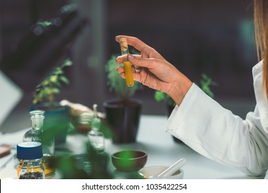 Homeopathy lab. Homeopath preparing alternative herbal medicines.