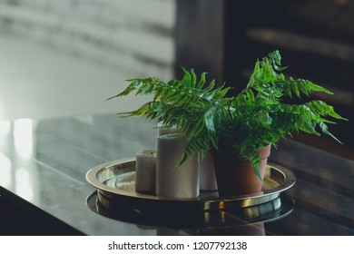 Homeplant fern in a bow pot and candles