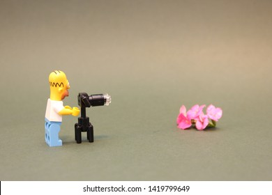Homer Simpson taking a picture of flowers