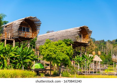 Homestay bamboo in the forest House made of bamboo at Chiang Dao chiangmai  thailand.