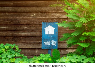 The homestay blue sign with old , retro wooden background with some green plant decoration.