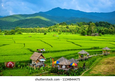 Homestay Farm and Coffee Shop is located in front of Wat Phuket, Pua District, which is called Toob na Tai Lue and Toob na Coffee In the atmosphere of the field, nan, Thailand, September 2017