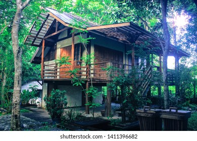 Homestay Guesthouse Retreat in Thai Forest - 2 Story Independent Villa for Meditation & Peaceful Stay - Sun rays & Greenery