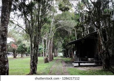 homestay at Phu Kradueng National Park