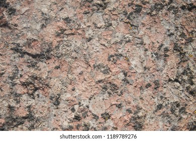 the homogeneous texture of the stone