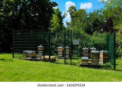 Honey bee farm, public park of the Abbey Saarn, Germany