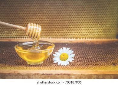 honey, chamomile, toned photo