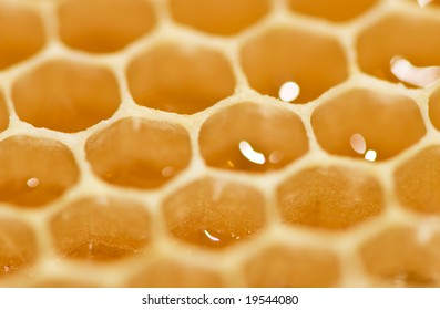 honey close-up