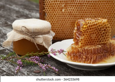 Honey in the comb on the table