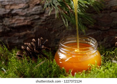 Honey flowing into a glass jar on a background of forest moss and tree bark.