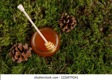 Honey in a glass jar with a wooden honey stick on a background of forest moss. View from above.