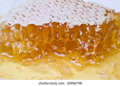 Honey in honeycomb close-up