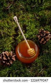 Honey stick in a jar of fragrant honey. A jar of honey on the forest moss and cones. View from above.